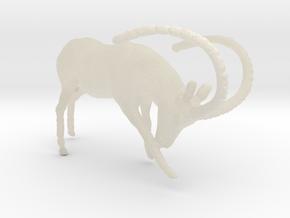 Deer in White Acrylic