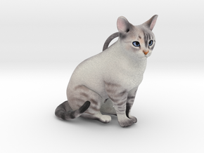 Custom Cat Ornament - Roxy in Full Color Sandstone
