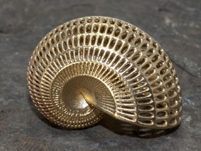 Nautilus Shell Wireframe Pendant Jewelry in Natural Brass