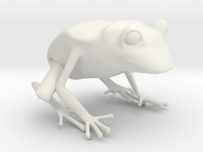 Wilds of Organica - Frog in White Natural Versatile Plastic