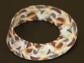 Grumpy Cat Mobius Strip (Infinite Grumpiness)  in Full Color Sandstone