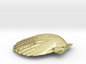Scallop Shell in 18K Gold Plated