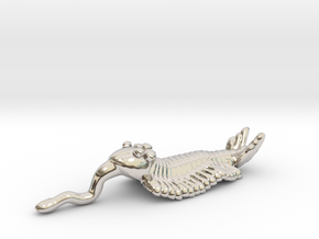 Opabinia - Big in Rhodium Plated Brass