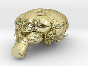 Get a pet mouse brain, real size!  Take it HOME  in 18K Gold Plated