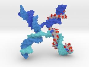 DNA - Holliday Junction in Full Color Sandstone