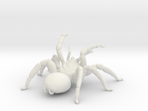 Tarantula Attack  in White Natural Versatile Plastic