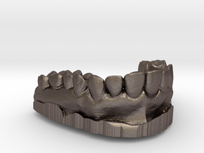 Anatomical Lower Teeth in Polished Bronzed Silver Steel