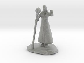 Female Dragonborn Wizard in Robe with Staff in Metallic Plastic