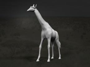 Giraffe 1:22 Standing Male in White Strong & Flexible