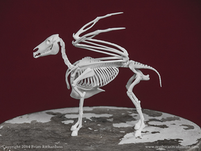 Pegasus Skeleton in White Natural Versatile Plastic