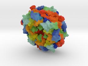 Ebola virus matrix protein in Full Color Sandstone