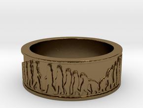 Evolution Ring Size 10 in Polished Bronze