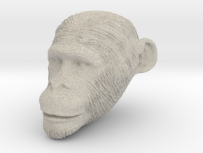 Head Chimp in Natural Sandstone