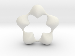 0058 Antisymmetric Torus (p=5.0) #007 in White Natural Versatile Plastic