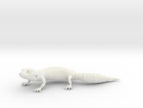 Leopard Gecko in White Natural Versatile Plastic