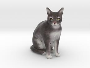 Custom Cat Figurine - Binx in Full Color Sandstone