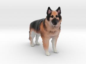 Custom Dog Figurine - Sasha in Full Color Sandstone
