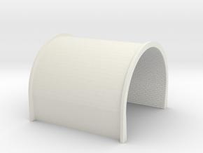 NT22 N-Train-tunnel-tube-2voie in White Natural Versatile Plastic