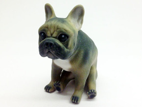 Sitting Brown Frenchie in Full Color Sandstone