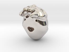 30440 in Rhodium Plated Brass