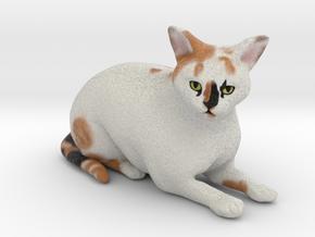 Custom Cat Figurine - CC in Full Color Sandstone