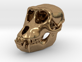 Macaque Rhesus Monkey Skull Pendant  in Raw Brass