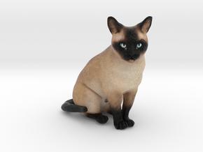 Custom Dog Figurine - Filou in Full Color Sandstone