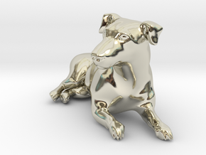 Laying Jack Russell Terrier 2 in 14k White Gold