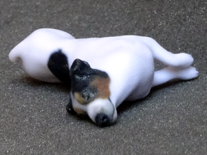 Laying Jack Russell Terrier 3 in Full Color Sandstone