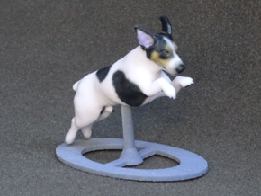 Jumping Up Jack Russell Terrier 1 in Full Color Sandstone