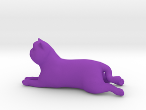 Laying Exotic Shorthair Cat in Purple Processed Versatile Plastic