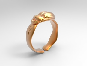 Scarabeo Size10 in Polished Bronze