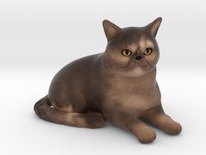 Custom Cat Figurine - Katie in Full Color Sandstone