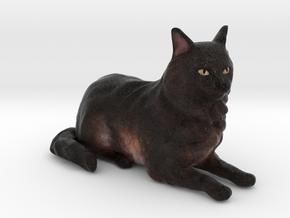 Custom Cat Figurine - Cassiopeia in Full Color Sandstone