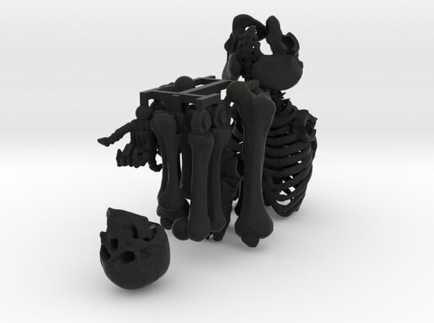SL01-Body-01  7inch