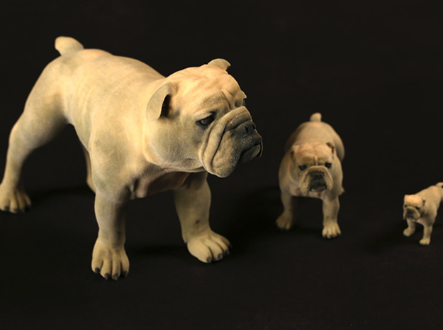 Bulldog XXL Full Color Sandstone 3d printed