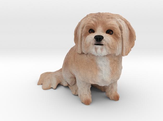 Custom Dog Figurine - Michie in Full Color Sandstone