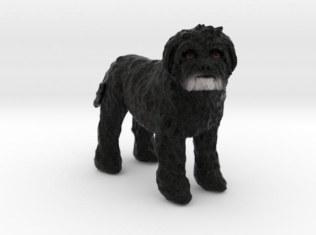Custom Dog Figurine - Cachou in Full Color Sandstone