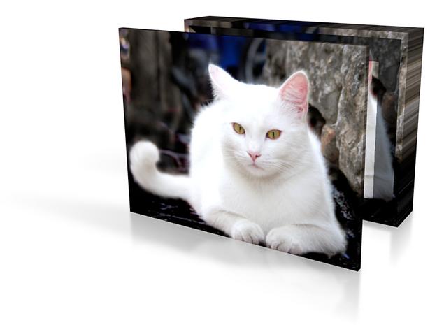 Gubbo cat box 4in 3d printed