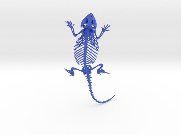 Bearded Dragon Skeleton - 7 Inches