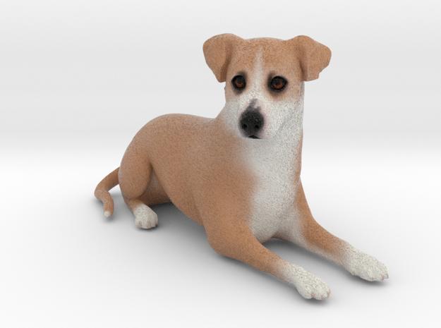 Custom Dog Figurine - Scar scar