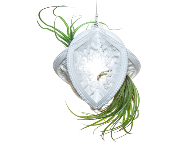 Radiolaria Papillae Planter in White Strong & Flexible
