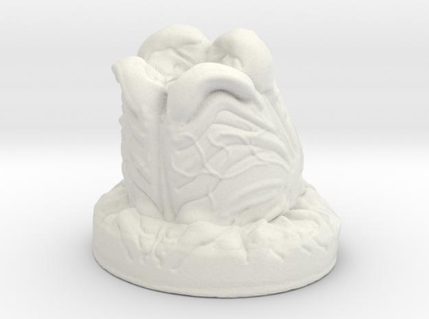 Alien Egg Pod - Open in White Natural Versatile Plastic