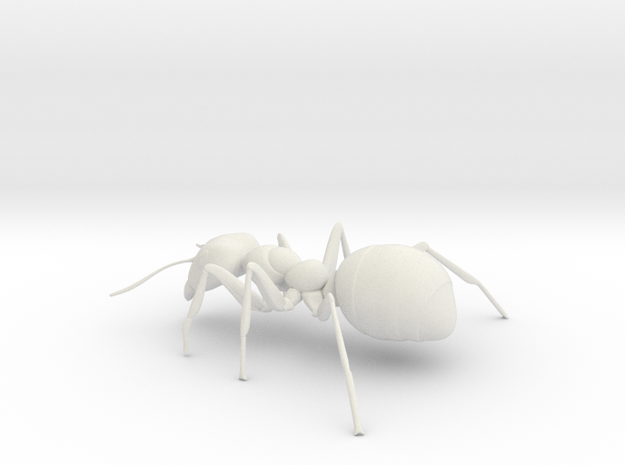 ANT-7inch in White Natural Versatile Plastic