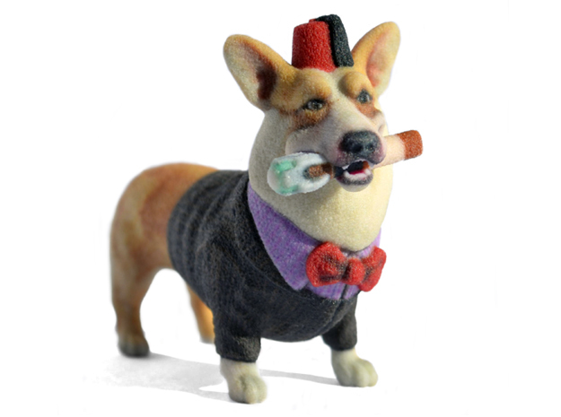 Dr. Who Corgi  in Full Color Sandstone