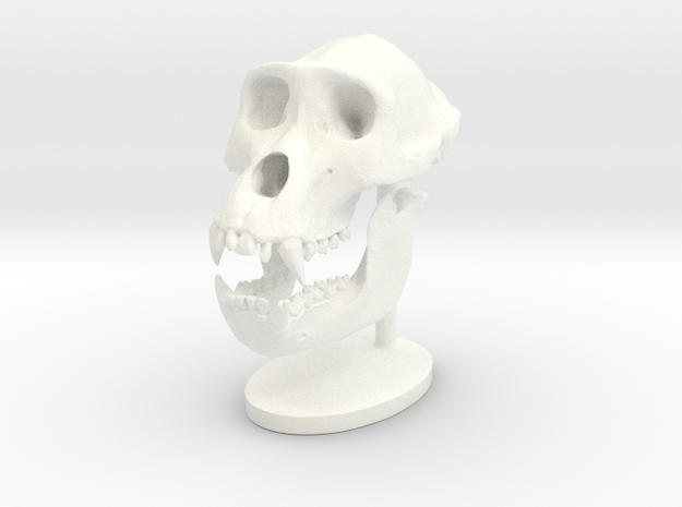 Gorilla Skull with base in White Processed Versatile Plastic