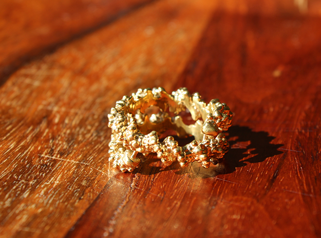 DNA Ring in Polished Brass: 10 / 61.5