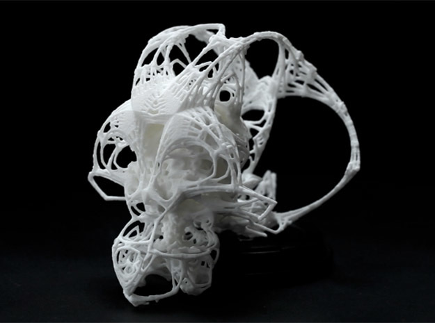 FRACTAL CRANIUM - BIG in White Natural Versatile Plastic