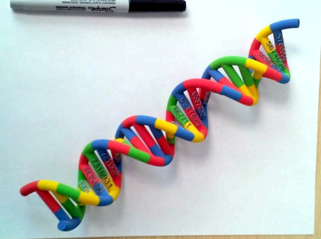 DNA Molecule Schneider PatentNr in Full Color Sandstone