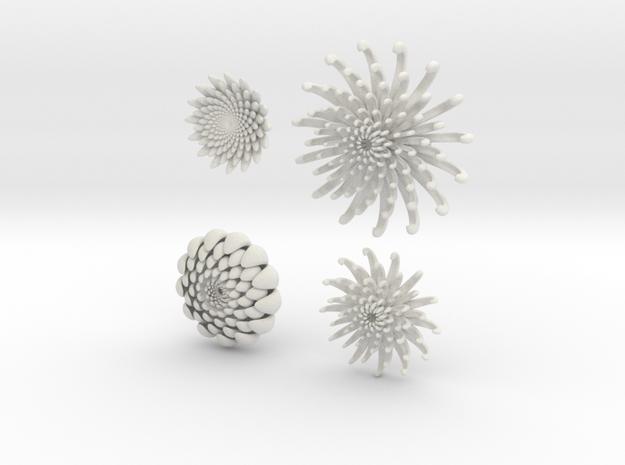 4-flowers in White Natural Versatile Plastic